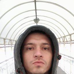 Антон, 36 лет, Краснодар