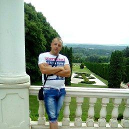 Владимир, 32 года, Михайловск