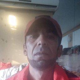 Али, 39 лет, Воронеж