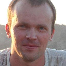 Алексей, Курск, 36 лет