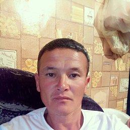 Акрам, 41 год, Бронницы