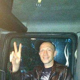 Андрей, 43 года, Пермь
