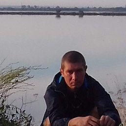 Александр, 35 лет, Тамбов