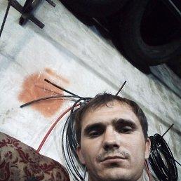 Николай, 31 год, Саратов