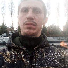 Алексей, 31 год, Курск