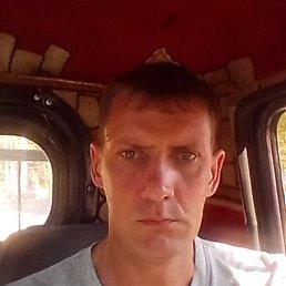 Миша, 41 год, Новосибирск