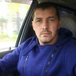 Дима, 37 лет, Екатеринбург