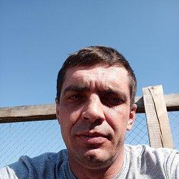 Сергей, 38 лет, Поспелиха