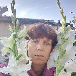 Елена, 38 лет, Барнаул