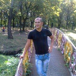 АНТОН, 35 лет, Таганрог