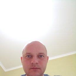 Максим, 38 лет, Саратов