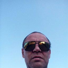 Алексей, 39 лет, Воронеж