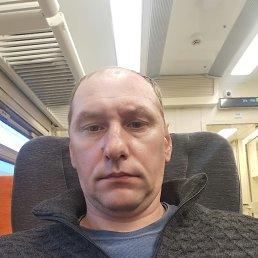 Дмитрий, 42 года, Рыбинск