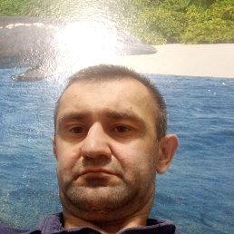 Владимир, 38 лет, Изобильный