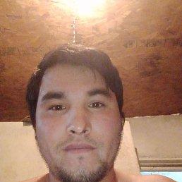 Али, 28 лет, Воронеж