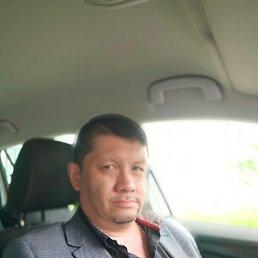 Дмитрий, 46 лет, Щелково