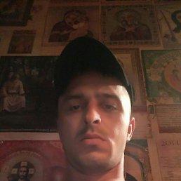 Дима, 27 лет, Кирсанов