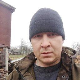 Николай, 33 года, Ядрин