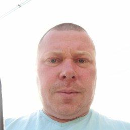 Сергей, 37 лет, Пермь