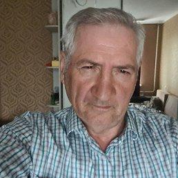 Александр, 65 лет, Белгород