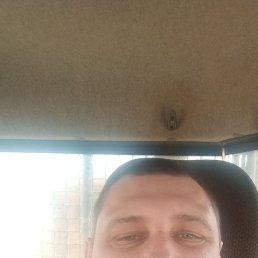 АНДРЕЙ, 40 лет, Брянск