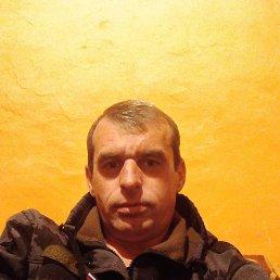 Юрий, 36 лет, Новосибирск