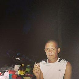 Михаил, 45 лет, Самара