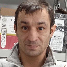 Николай, Апатиты, 37 лет