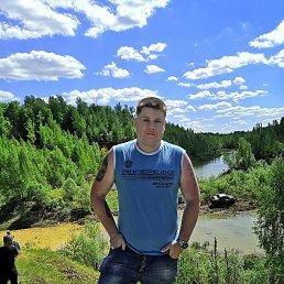 Алексей, 29 лет, Тула