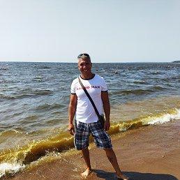 Владимир, 41 год, Санкт-Петербург