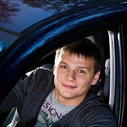 Алексей, 37 лет, Волгодонск