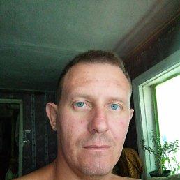Евгений, 37 лет, Белгород
