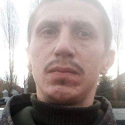 Алексей, Курск, 31 год