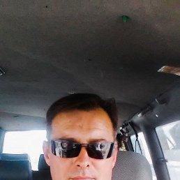 Алексей, 37 лет, Тирасполь