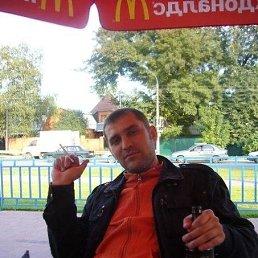 Николай, 42 года, Саранск