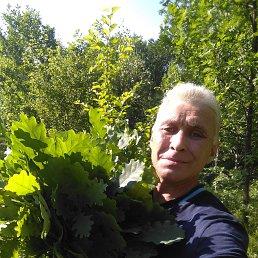 Ринат, 52 года, Татарстан