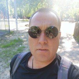 Николай, 41 год, Воронеж