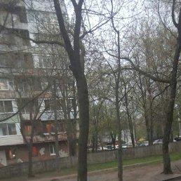 Алексей, 29 лет, Рязань