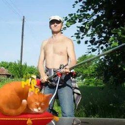Сергей, 46 лет, Электросталь