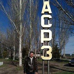 Юрий, 58 лет, Реутов