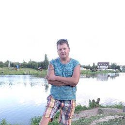 Владимир, 37 лет, Апрелевка