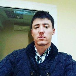 Дима, 29 лет, Барнаул