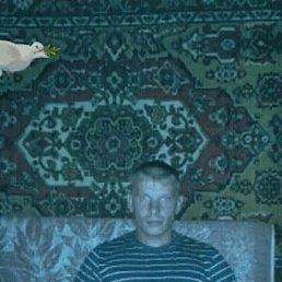 Николай, 37 лет, Касли