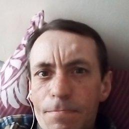 Александр, 49 лет, Подольск