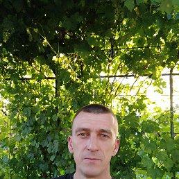 Динис, 41 год, Бишкек