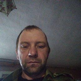 Лёша, 35 лет, Воронеж